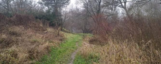 Beniakovce Land – for living Sale reality Košice-okolie