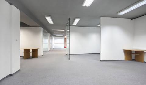 Spacious offices in Bratislava, Ružinov for rent